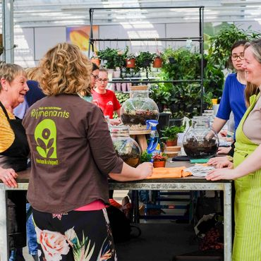 Bloemschikworkshop Advent Massenhoven